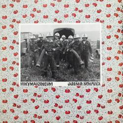 Vinyl Jaromír Nohavica - Mikymauzoleum