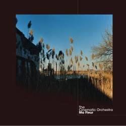 Vinyl Cinematic Orchestra – Ma Fleur, Ninja Tune, 2014, 2LP, Cardbox s 12 obrázkami