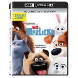 Blu-ray Tajný život mazlíčků, The Secret Life of Pets, UHD + BD, CZ dabing