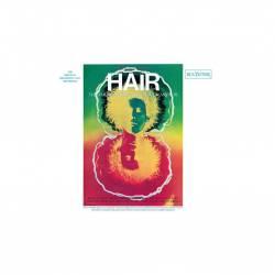 Vinyl Soundtrack - Hair (Original Broadway Cast), Music on Vinyl, 2021, 2LP, 180g, 8 stranová brožúrka, čierny vinyl